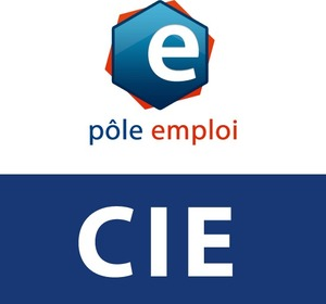 contrat-initiative-emploi-cie-110